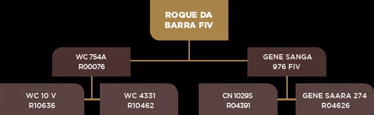 Genealogia Roque da Barra Fiv