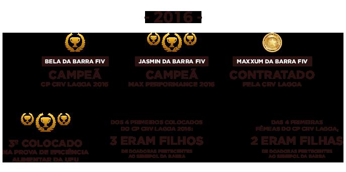 conquistas-2016