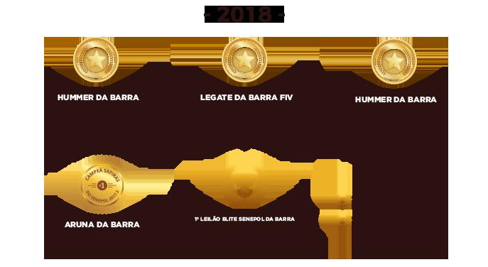 conquistas-2018
