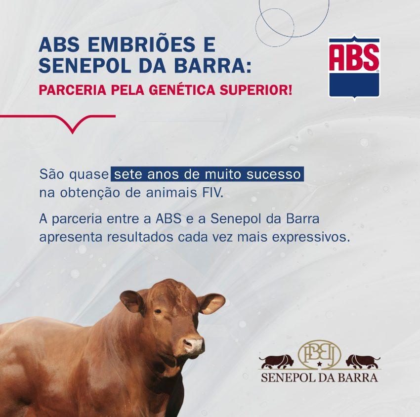 ABS Embriões e Senepol da Barra